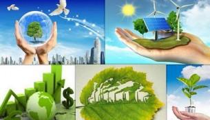 luật V môi trường