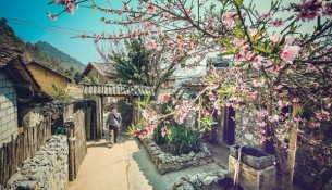 Lo Lo Chai has been known to many tourists. Photo luhanhvietnam.com.vn