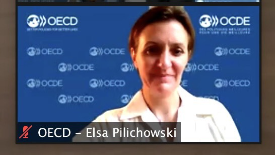 Ms. Elsa Pilichowski, Director for Public Governance, OECD, delivering the opening remarks